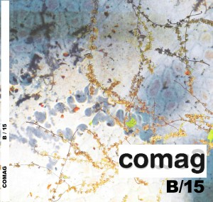 comag-coverb15